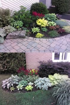 More planting ideas for low maintenance for the front yard. by angel