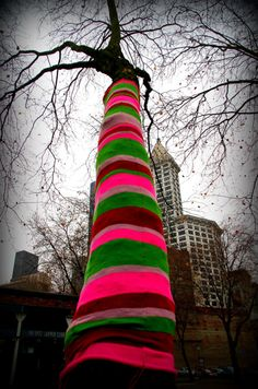 Tree Sweaters in Occidental Park