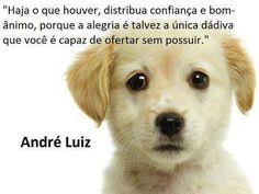 Doutrina Espírita: frases de André Luiz