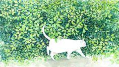 mourning dove studios: Artist Love // Midori Yamada's Cats