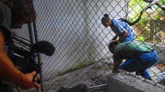 Jungle Animal Hospital - Michael Sanderson - Making Of BBC