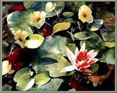 Waterlilies #watercolor