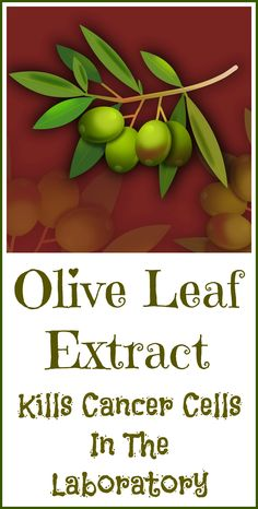 Olive leaf extract has powerful anti-cancer compounds and has been shown to kill cancer cells in the laboratory.