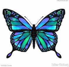 turquoise butterfly tattoo - Google Search