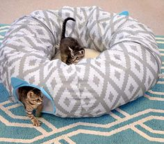 """Zip-together combination play Tunnel and cozy cat nap spot in one Plush cat bed is comfortable enough for an all-day snooze Circular Tunnel is perfect for a chase or cats who want to hide out of sight Fun hanging toys for your feline friend to swat at 39"""" W x 39"""" D x 12.5"""" H; collapses down for easy travel  Report incorrect product information. Play Tunnel, Travel Report, Cat Beds, Scratching Post, Swat, Pet Supplies, Bean Bag Chair, Plush, Kitty"""
