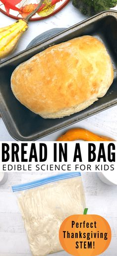 Bread in a bag recipe that makes amazing homemade bread. This is a super fun Thanksgiving STEM activity for the kids to take part in. This is a bread in a bag recipe and makes a great edible science for kids! Recipes for kids to make Bread in a Bag Bread In A Bag Recipe, Bread In Bag, How To Make Bread, Food To Make, Bread Making, Bread Recipes For Kids, Kids Cooking Recipes Easy, Homemade Bread For Kids, Kid Recipes