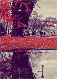 red autumn- Drama, Greece