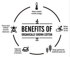 Denim - Organic Cotton | Blog de Bershka Bscene