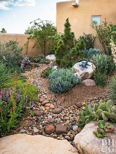 Create A Water-Wise Landscape With many parts of the country under drought restrictions, this flowery garden leads by example and shows how low water can still produce high color. Water Wise Landscaping, Landscaping With Rocks, Front Yard Landscaping, Backyard Landscaping, Landscaping Ideas, High Desert Landscaping, Backyard Ideas, Landscaping Software, Desert Backyard