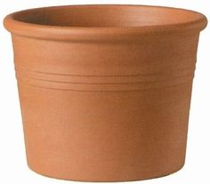 great source for unique plant pots! (Italian Cylinder)