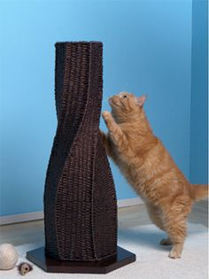 "Sisal yarn weaved around an eye catching design, the Calypso Cat Scratcher makes a great cat scratching post as well as a beautiful floor accent piece.  - Made of durable sisal yarn wrapped around wire frame  - Supplementary weighed bottom resists tipping (not shown)  - Tall enough for large cats to stretch and scratch  - Floor levelers available  21.5"" wide x 19.5"" deep x 30"" high"