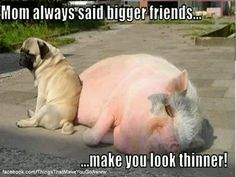 Oh my goodness...then I need bigger friends!