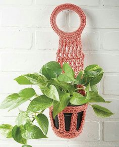 Pretty Little Plant Hangers from Leisure Arts presents crochet designs in a variety of sizes and shapes. Made using cotton medium weight yarn, designs range from a tiny wall hanger for an air plant to strappy hangers for bushy, towering, or trailing plant Metal Plant Hangers, Macrame Plant Hangers, Crochet Plant Hanger, Crochet Home Decor, Hanging Pots, Little Plants, Plant Holders, Crochet Designs, Crochet Flowers