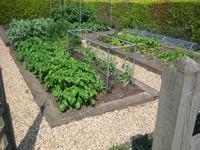 Vegetable Garden Design and Landscaping