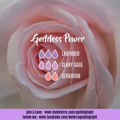This blend is for the rise of the goddess with a gentle power of love.