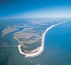 Located on one of Northeast Florida's unique sea islands, Big Talbot Island State Park is primarily a natural preserve providing a premier location for nature study, bird-watching, and photography. Explore the diverse island habitats by hiking Blackr