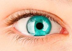 Eyes & Liver