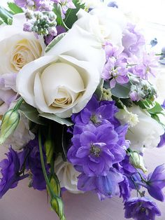 colors - lilac and white