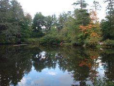 From viewer Linda Barden Mirror Lake in Highlands, Fall colors starting