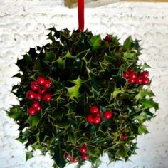Traditional Christmas with a Natural Holly Ball