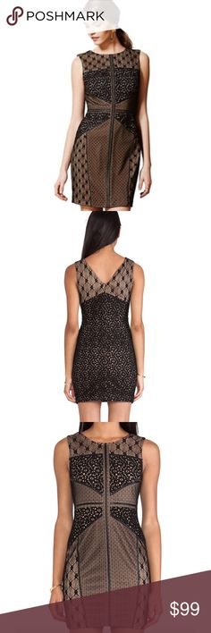 """Heartloom Anthro Lace Topography Sheath Dress NWT 🔸Heartloom Anthro Sz XS Lace Topography Wilson Sheath Black Brown Dress NWT🔸Size XS🔸New With TAGS!🔸This sheath from Heartloom is a versatile stunner 🔸Flattering contour seams 🔸Vintage-inspired lace panels🔸By Heartloom🔸Back zip🔸Nylon, spandex; polyester lining🔸Dry clean🔸Regular: 37.5""""Length 🔸Bust 32-34🔸Slight stretch 🔸Imported🔸Style No.29038783🔸Brand new with tags! Anthropologie Dresses"""