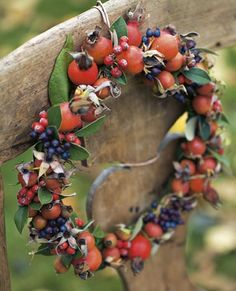 rose hips and berries