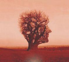A busca da homeostase através da psicanálise e suas respostas através do amor ao próximo.
