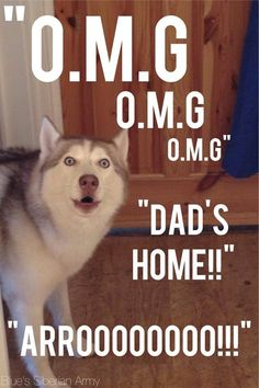 Dad's home!!!!!