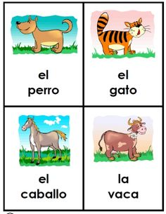 40 large cards -- animals in Spanish for young ones -- completely FREE and easy… Spanish Lessons For Kids, Preschool Spanish, Elementary Spanish, Spanish Activities, French Lessons, Learn Spanish, French Class, Spanish 1, Spanish Teacher