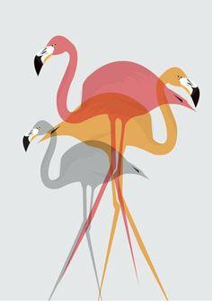 Items similar to Flamingo - Illustration by Ailsa Ash - Print by Sunshine Design on Etsy Flamingo Illustration, Digital Illustration, Flamingo Art, Pink Flamingos, Deco Rose, Pink Bird, Pink Plastic, Bird Art, Framed Art Prints