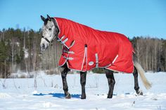 This Pony sized ComFiTec Blanket will keep your pony comfortable this winter. It keeps the chill of wind and snow off the neck and back while it allows for movement so your pony can frolic all winter long. The WeatherBeeta ComFiTech Classic Com Equestrian Boots, Equestrian Outfits, Equestrian Style, Equestrian Fashion, Horse Fashion, Riding Hats, Horse Riding, Riding Helmets, Riding Clothes