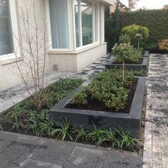 Landscape Design, Garden Design, House Design, Prairie House, Garden Pool, Garden Inspiration, Outdoor Living, Backyard, Flowers
