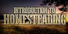 Introduction to homesteading for beginners