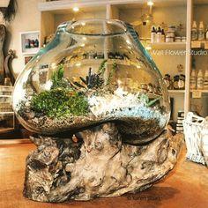 woodland terrarium - Wall Flower Studio