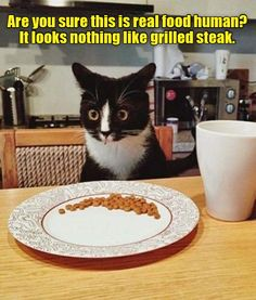 Srsly? http://cheezburger.com/9002271232