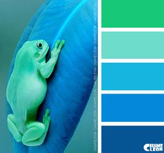 COLOR PALETTE ~ TREE FROG AND MARINE LEAF SHADES ~~~~~*~~~~~