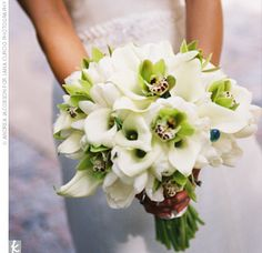 white calla lilies, white tulips, and green cymbidium orchids