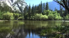 A still reflecting lake within a granite sided valley brings peace and beauty together for a perfect day. Yosemite California, Central California, Northern California, Mirror Lake, Go See, Places To Go, Country Roads, River, Outdoor