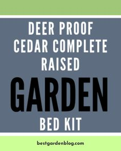 Look at the webpage to see more on Learn More About 14 Fascinating Garden Steps That You Can Make In Your Free Time Click the link to read more. Garden Steps, Garden Soil, Raised Garden Beds, Gardening, Patio Design, Garden Design, Read More, Diy For Kids, Improve Yourself