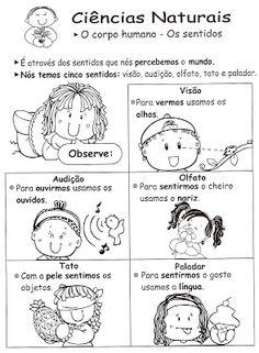 Atividades Escolares Lúdicas: Seleção de atividades: os 5 sentidos