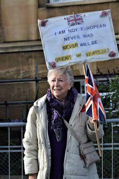 ANGER as senior Labour & Plaid Cymru politicians label Brexit supporters 'fascist & racist'! Brexit Humour, Pax Britannica, Plaid Cymru, Protest Signs, Donald Trump Jr, Political Quotes, Conservative Politics, Badass Quotes, Stupid People