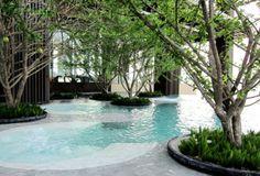 'Mangrove pool'