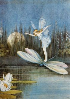 ✨Have a magical day! Ida Rentoul Outhwaite More