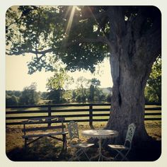 """Did you know Sycamore Farm hosts beautiful weddings and other events?     @Lauren Dexter's photo: """"#sycamorefarm #bloomington"""""""