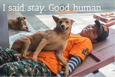 Thank you for captioning this photo of dog meat trade survivor Deer and one of her carers! Credit goes to Leah Paracy for this caption.