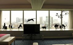 """""""Cat's Room"""" by The prince park tower hotel"""