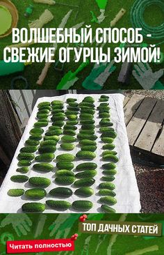 Keto Recipes, Cooking Recipes, Healthy Recipes, Good Food, Yummy Food, Russian Recipes, Holiday Tables, Natural Health, Food To Make