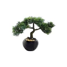 Artificial Bonsai Tree ($19) ❤ liked on Polyvore featuring home, home decor, floral decor, black flower pots, bonsai tree pot, watering pot, black home decor and black plant pots