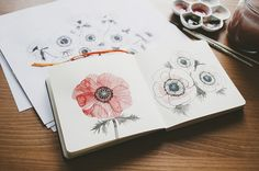 Lovely flower illustrations by oana befort, via Flickr... could take a Zentangle flower and watercolor over it