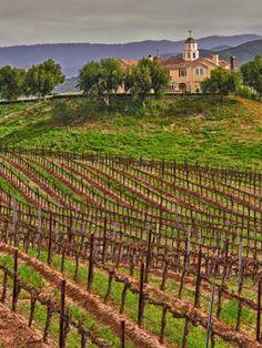 #Leoness Cellars, Temecula, California, USA #winerovertours.com